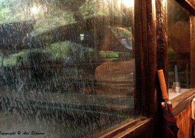 © Avi Schneor - Reflections c2