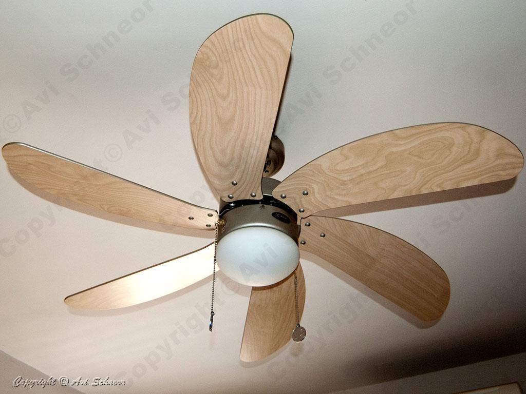 Westinghouse ceiling fan model Turbo-Swirl general view