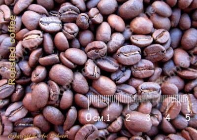 מראה פולי קפה קלוי View of roasted coffee beans